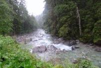 Der Fluss Javorinka